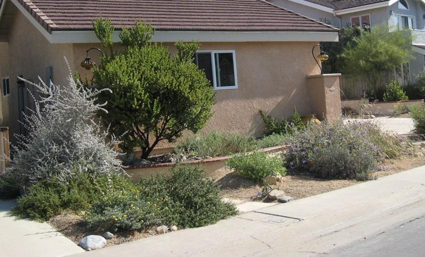 Desert Garden SJC