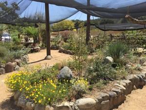 TOLN Garden